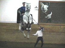 Experience airs above the ground on your horse holiday